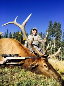 Big Game Hunting and Trophies From August to November 2014
